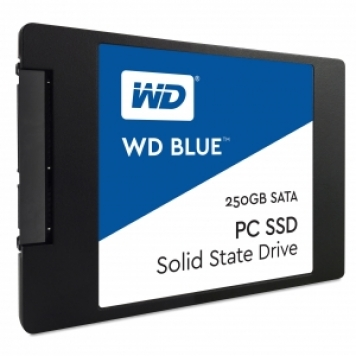 SSD WESTERN DIGITAL 250GB